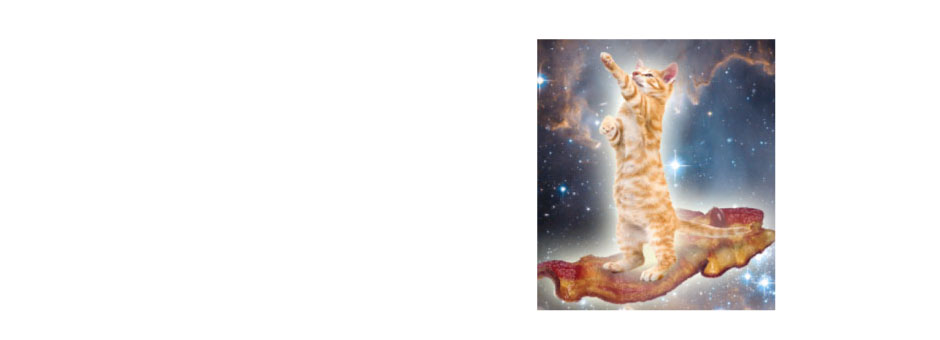 Kitten riding bacon magic carpet