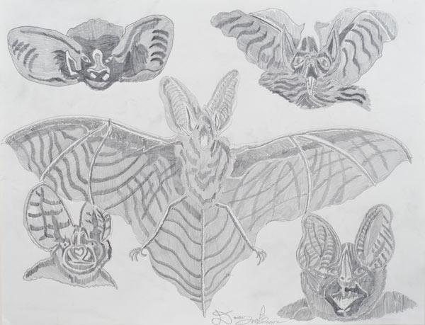 """""""Bats"""""""